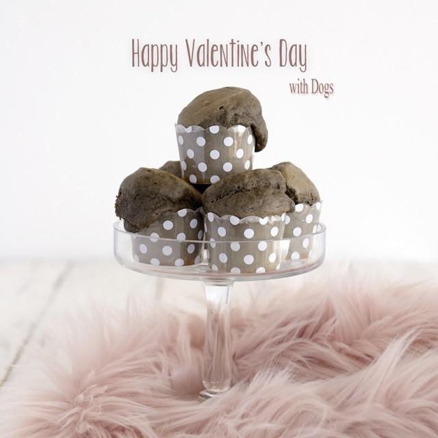 ダイソー 100円グッズで!わんこと楽しむバレンタイン~チョコ風黒ゴマカップケーキ