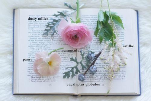 春色の花~ブラッシュピンク~