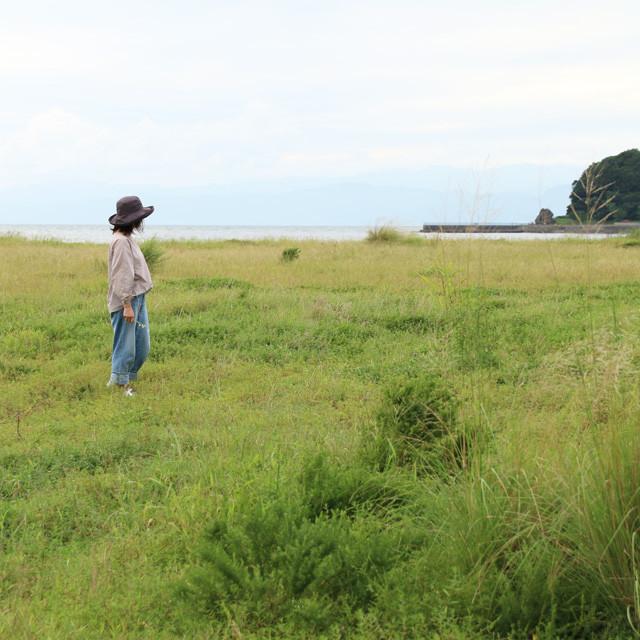 野花 暮らし ライフスタイル 雑草 野草 ガーデニング
