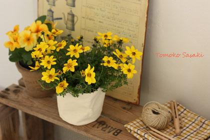 鉢カバー・鉢ポットで気軽に花を飾る