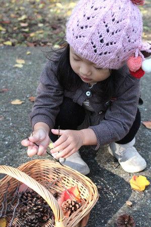 小さな木の枝と松ぼっくりをたくさん拾ってきました。 自然の恵みを少しだけお裾分けしてもらいます♪