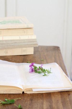 小さな草花を和紙の上にのせて本に挟み、 上から本で重しをして押し花を作ります。 (できるだけ水分の少ない小さな花を選ぶのがコツです)
