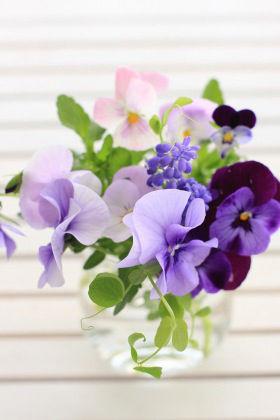 押し花で、切り花で。ガーデン・フラワーを楽しもう