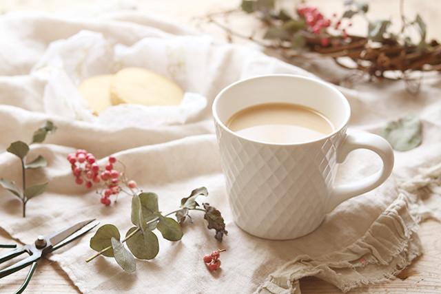 紅茶 ミルクティー 美味しい 簡単 作り方