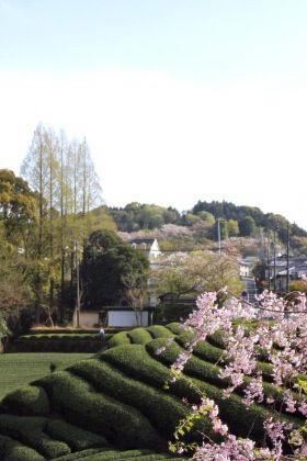 Garden*Garden ~お庭の時間