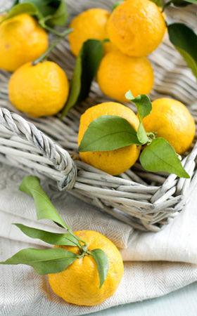 手づくりの柚子茶で風邪予防