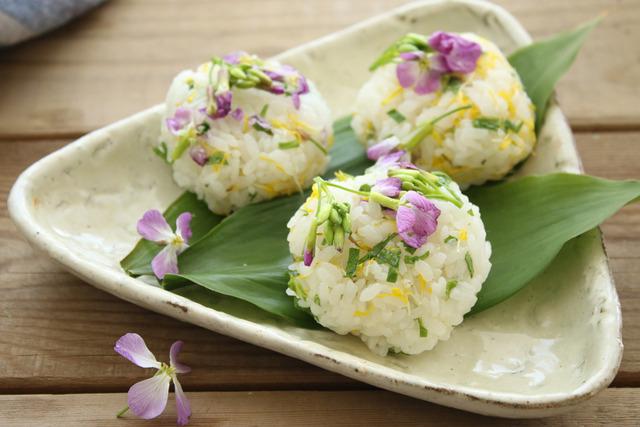 レシピ おにぎり 野草 タンポポ ハマダイコン 作り方