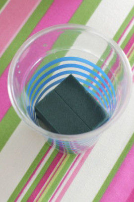 (2)切り花アンスリウムを入れるカップを用意。 中に小さなオアシスを入れて水も入れます。