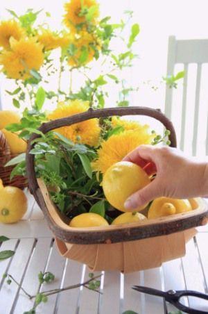 レモンイエローの八重咲きひまわりで、夏のアレンジ