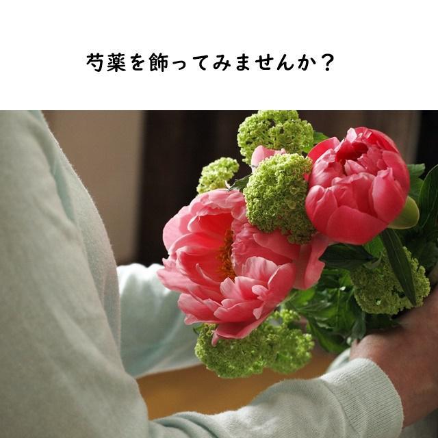 今が旬!お気に入りの芍薬を飾ってみませんか?