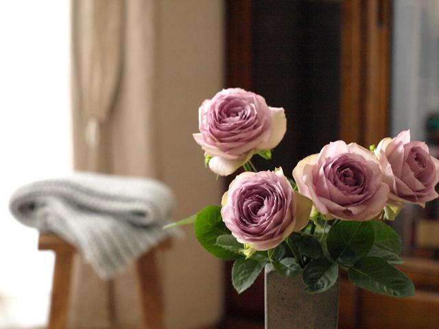 バラ 薔薇 アレンジメント 長持ち 育て方
