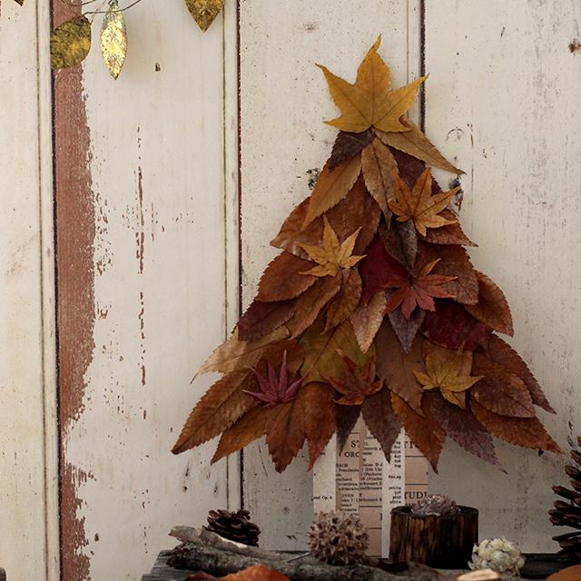 移ろいゆく色も楽しみに 落ち葉でつくる簡単クリスマスツリー