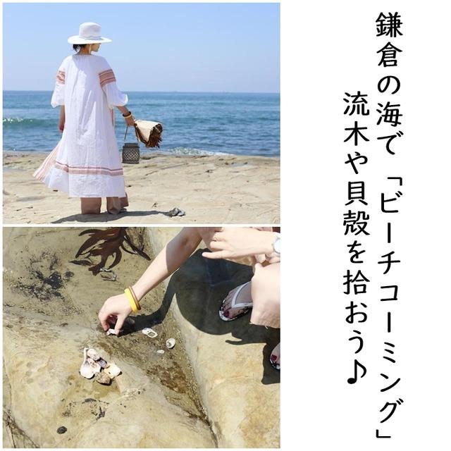 江ノ電ぶらり旅② 鎌倉の海で「ビーチコーミング」! 流木や貝殻を拾おう♪