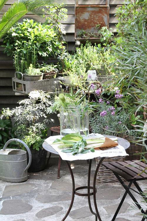 ブリキと赤錆で「BROCANTE」スタイル! 鉢中心で楽しむ初心者の庭