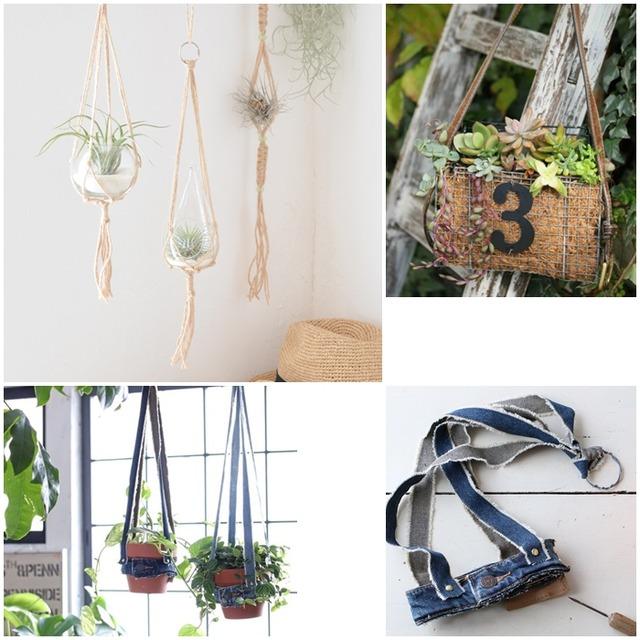 植物を吊そう! おしゃれなプラントハンガーの作り方 3選