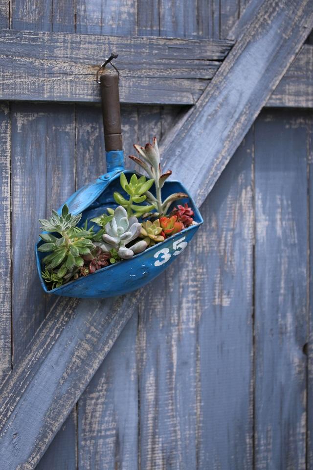 ダイソー 100均 多肉植物 ゆきひら鍋 DIY