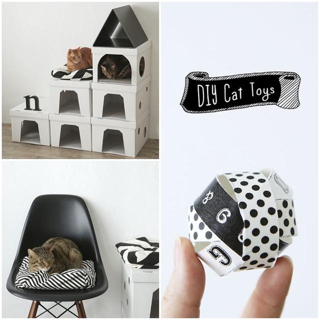 猫が喜ぶ♪ 簡単でプチプラな手作りアイテム 3選