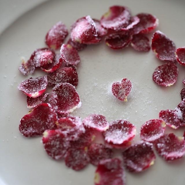ハーブ&アロマのある暮らし~シュガーローズでLOVEを伝えるバレンタインデー