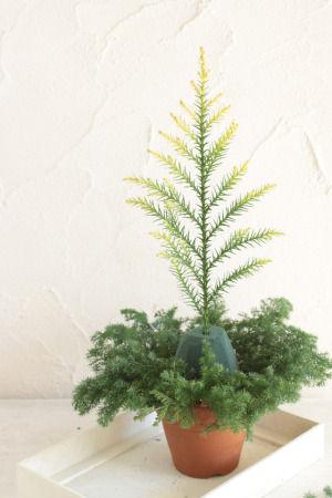 フラワーアレンジでクリスマスツリー