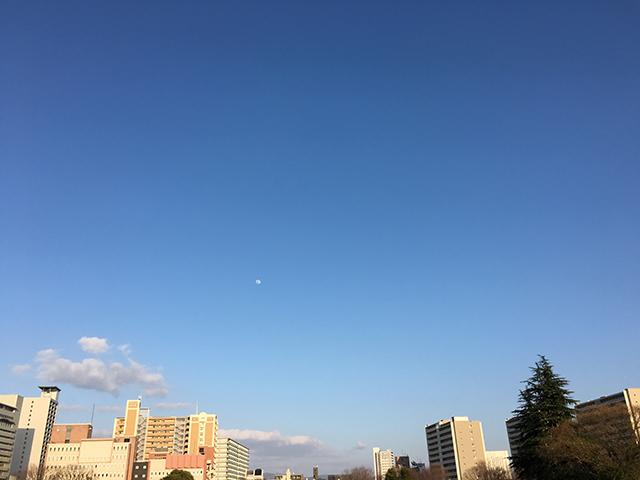 42ktoyohara_20160517_003