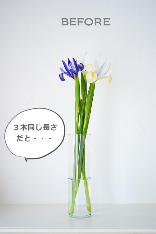 丹後の節句 アイリス アレンジ 花色配色 こどもの日
