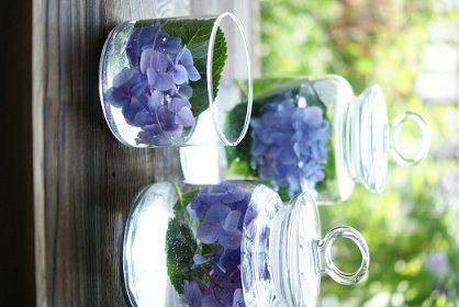 紫陽花で涼をお部屋に