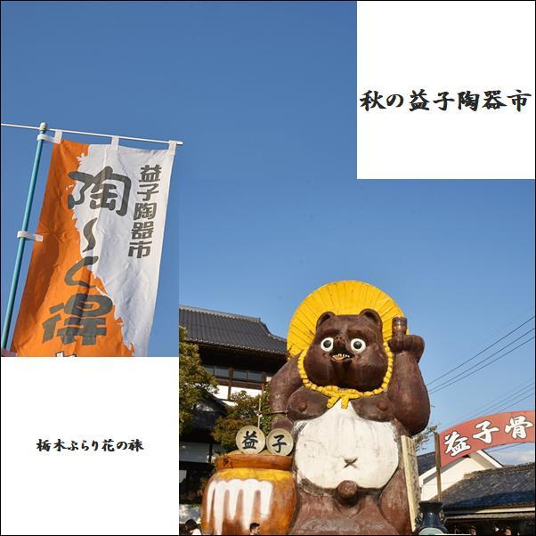 【栃木ぶらり花の旅・秋の益子陶器市】お気に入りの1品を探す旅