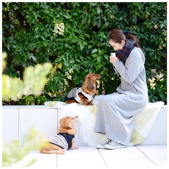 愛犬と一緒におしゃれに撮る♪ wanセルフィーの楽しみ方 撮影アイテム編