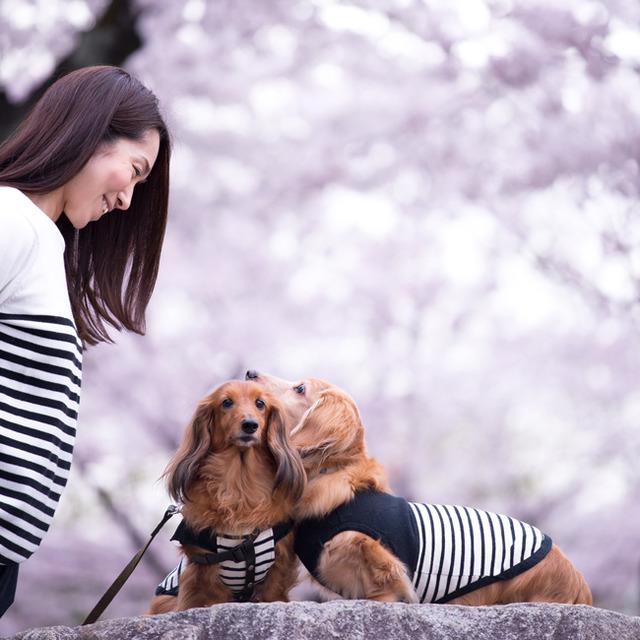 愛犬と一緒におしゃれに撮る♪ wanセルフィーの楽しみ方 ポージング編