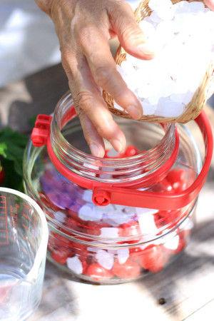 1.よく乾かした瓶に、きれいに洗って水気をふいたグミを瓶に入れて、氷砂糖を入れます。