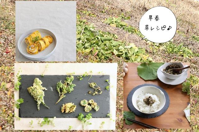 雑草 野花 食べ方 レシピ 作り方