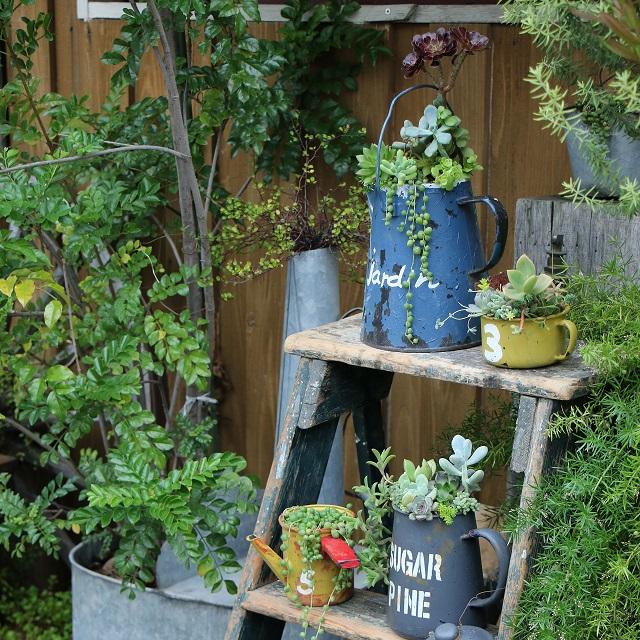 リメ缶・リメイク鉢に多肉植物を植えて、ジャンクガーデンを楽しもう♪