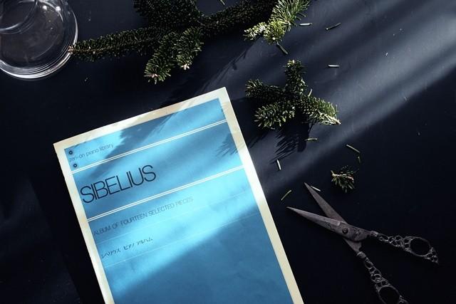 クリスマスの静寂。シベリウスのピアノ小品集より『樅の木』