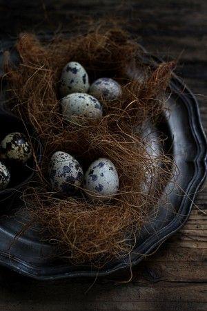 ココファイバーの上に 茹でたうずらの卵をのせるだけ^^ 細かい繊維が落ちるので トレイやお皿の上に飾ってくださいね。