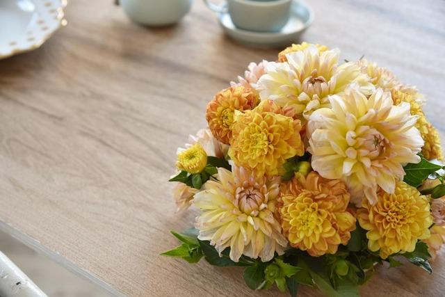 ダリア アレンジメント 秋の花 ラウンドアレンジメント