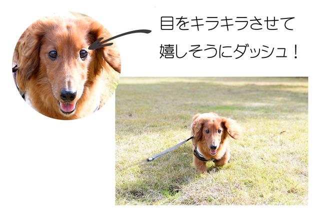 42mtakayama_008_20160122