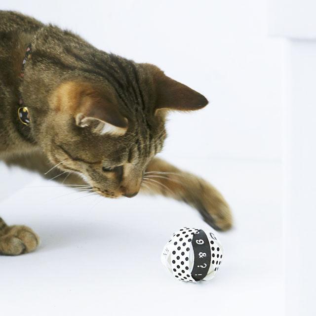 材料費0円! トイレットペーパーの芯とマスキングテープで作る猫の手作りおもちゃ