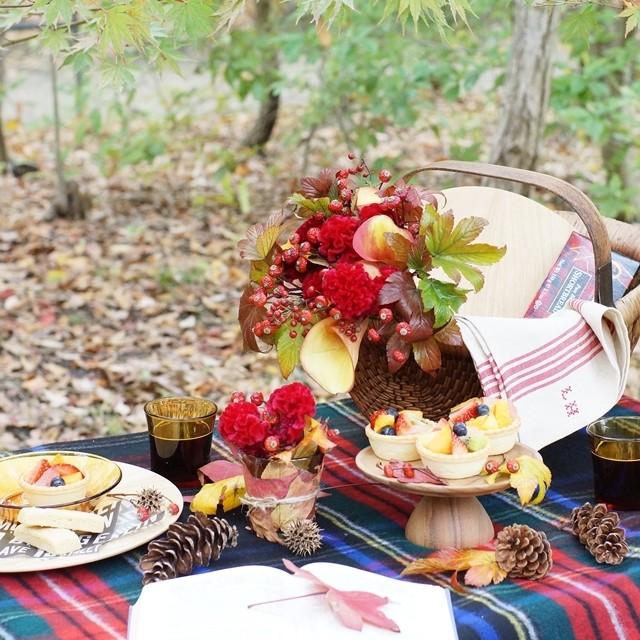 【秋の花色配色】紅葉した葉色のように、晩秋の花色合わせのコツ