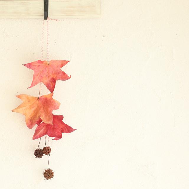 落ち葉&木の実をインテリアに♪ スワッグの作り方ポイントつき