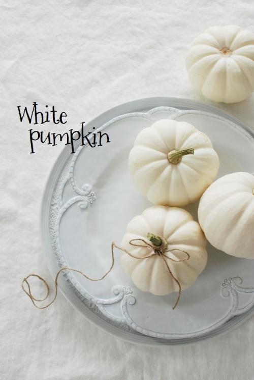 今年のハロウィンはホワイトパンプキン!
