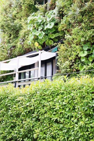 住宅街の中にある、緑溢れる癒しのカフェ「Plantscafe」
