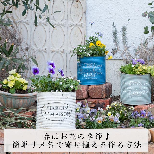 春はお花の季節♪ 簡単リメ缶で寄せ植えを作る方法