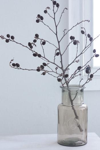 2012クリスマス特集・6 「ヤシャブシ」などの枝ものに注目!