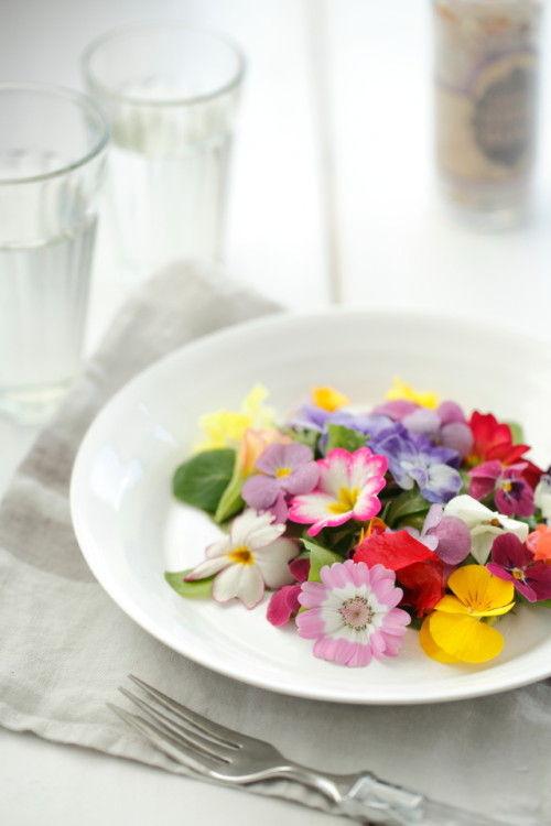 お皿の上も春爛漫♪ エディブルフラワーのスプリングサラダ