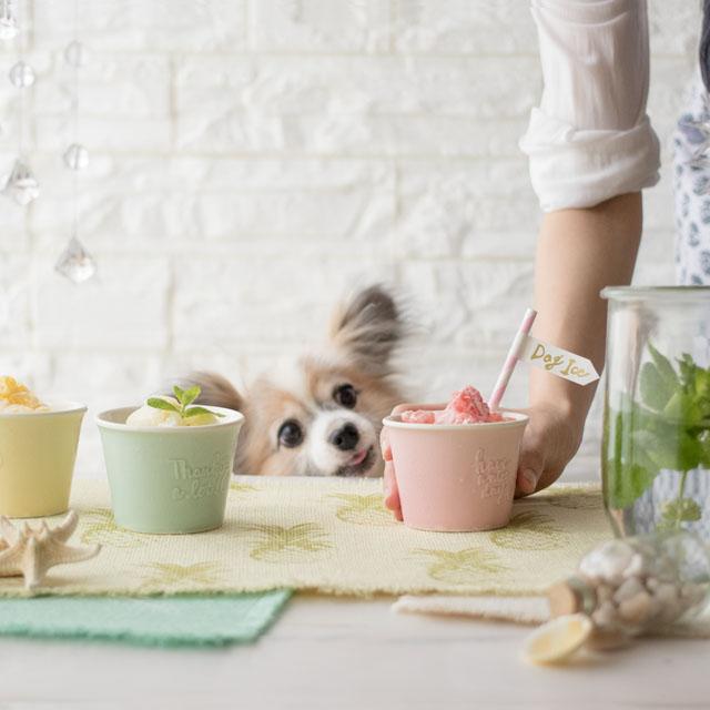 わんこの水分補給&熱中症対策に♪ 愛犬用フルーツシャーベットの作り方