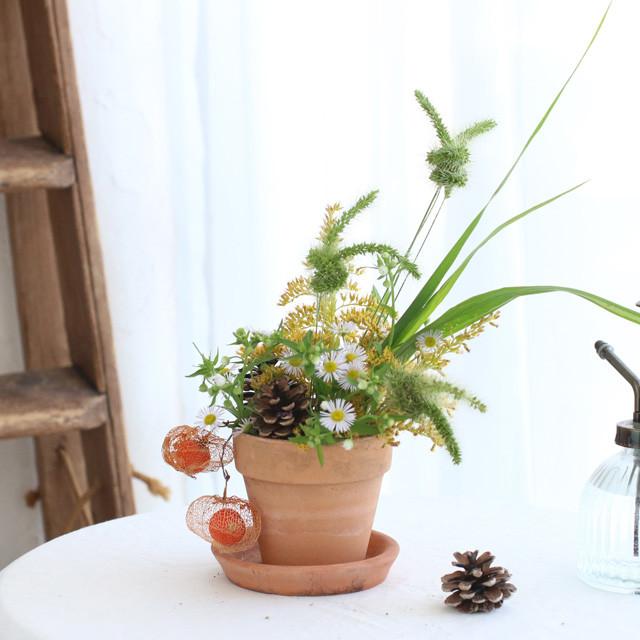[雑草アレンジ]植木鉢に生ける♪ エノコログサのウサギ&セイタカアワダチソウのアレンジの作り方