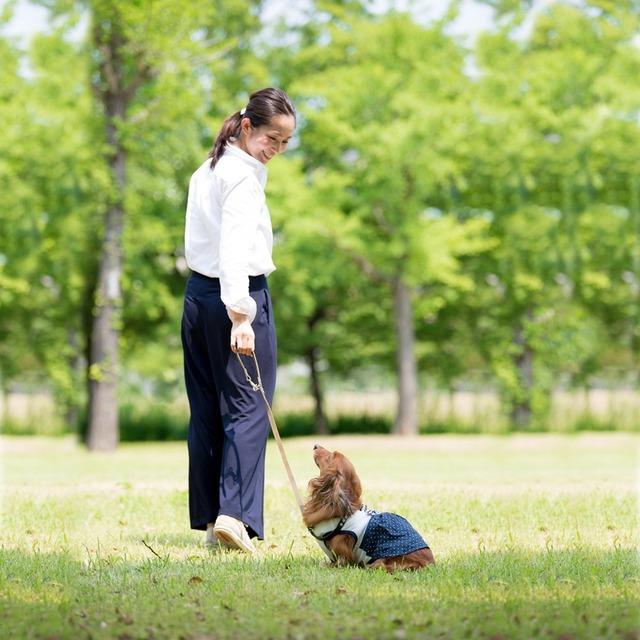 愛犬と一緒におしゃれに撮る♪ wanセルフィーの楽しみ方 簡単ポージング編