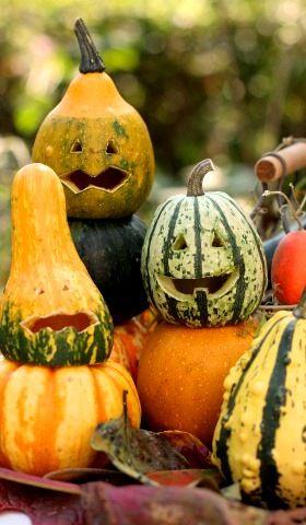 ハロウィン特集 かぼちゃを重ねてジャック・オ・ランタン