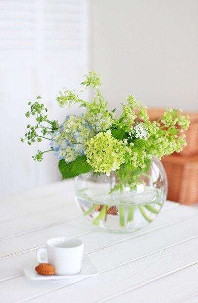 """意外とキュートな野菜の花 """"ベジ・フラワー"""""""