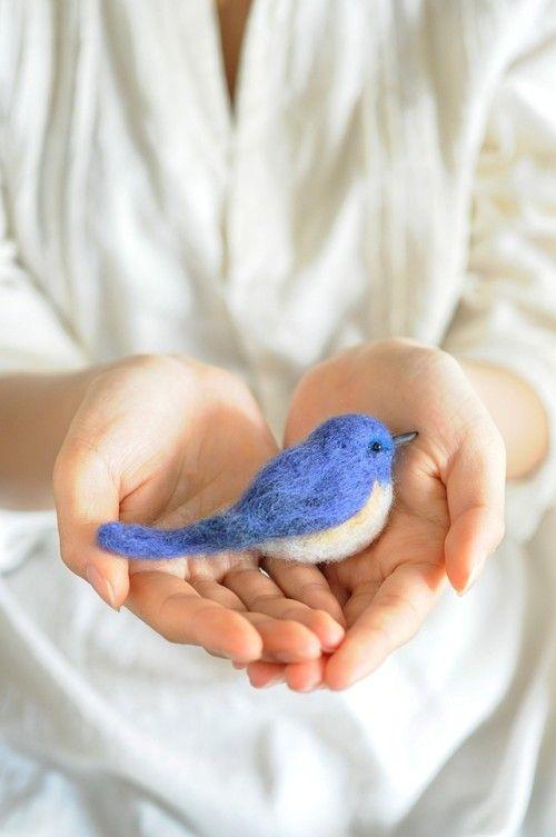 5月10日から愛鳥週間がはじまります